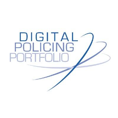 DPP logo.jpg